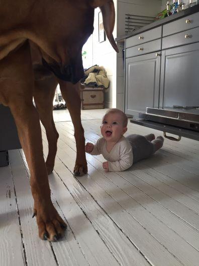 Lilly har alltid tyckt såå mycket om Ralph